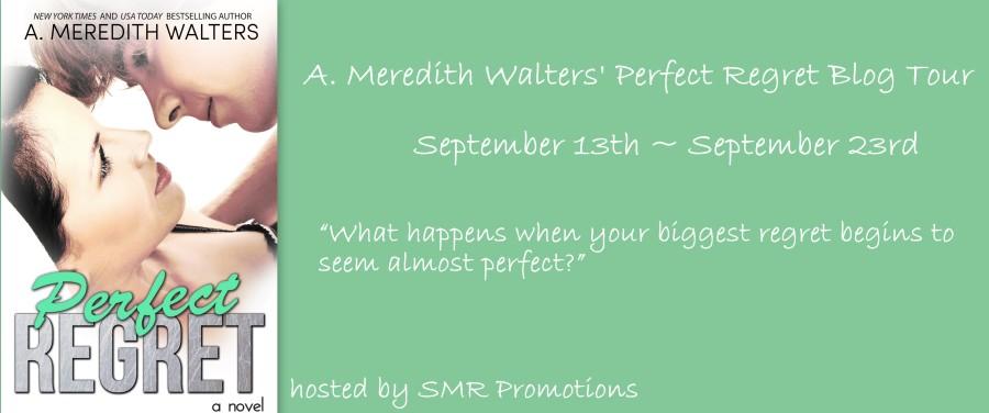 Perfect Regret Blog Tour Banner 2