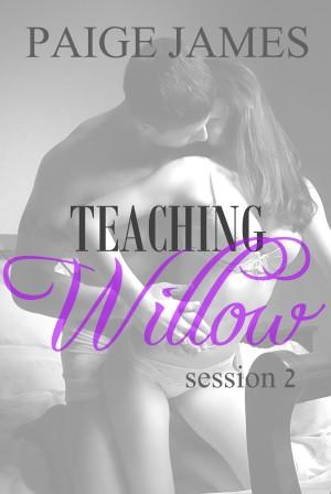 TEACHING WILLOW 2