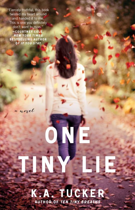 One Tiny Lie cover
