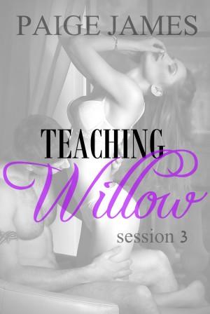 TEACHING WILLOW 3