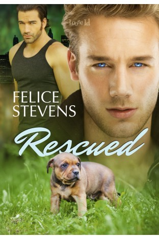 Review, Bonus Scene and Giveaway: Rescued by Felice Stevens