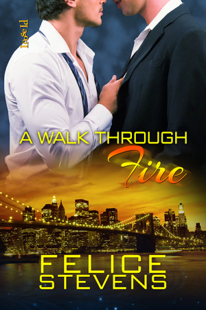 Review and Giveaway: A Walk Through Fire by Felice Stevens