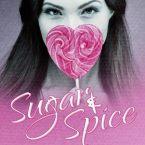 Teaser Blitz: Sugar & Spice by Heidi McLaughlin, Caisey Quinn, Melissa Pearl, Anna Cruise, Elizabeth Lee, Megan Squires, Kelly Walker, T.G. Ayer