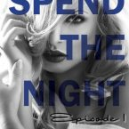 Exclusive Excerpt Reveal: Spend The Night (The Hotel Collection #1) by Elizabeth Lee