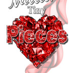 Exclusive Bonus Scene and Giveaway from A Million Tiny Pieces by Nicole Edwards