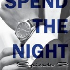 Review and Giveaway: Spend the Night II (The Hotel Collection #2) by Elizabeth Lee