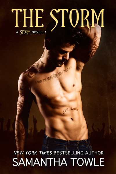 Cover Reveal || Giveaway The Storm by Samantha Towle