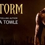 Cover Reveal: The Storm (The Storm #3.5) by Samantha Towle