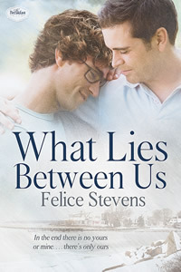 Review: What Lies Between Us (The Breakfast Club #4) by Felice Stevens