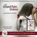 Series Review: The Rule Breakers Series by Roya Carmen