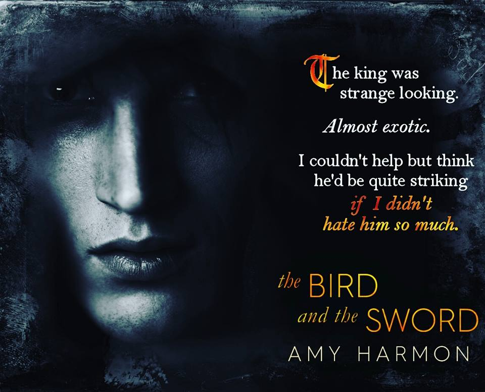 the bird and the sword teaser
