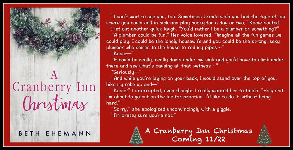a-cranberry-inn-xmas-teaser