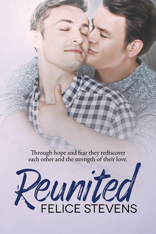 Review of Reunited by Felice Stevens
