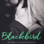 Teaser Blitz: Blackbird by Molly McAdams